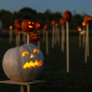 10/27 Pumpkins on Pikes - Stahlmans at Bear Creek-Farm Stand and Pecans