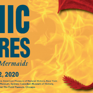09/28 - 01/12 Mythic Creatures: Dragons, Unicorns & Mermaids - The Witte