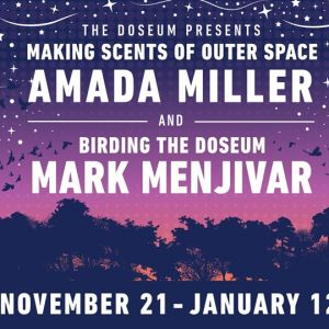 11/21 - 01/12 Artist-In-Residence - The DoSeum