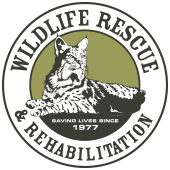 Wildlife Rescue and Rehabilitation - Educational Presentations