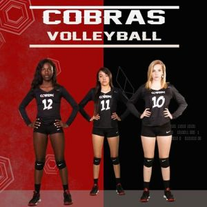 Cobras Volleyball Club