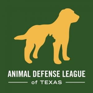 Animal Defense League of Texas - Volunteer Programs