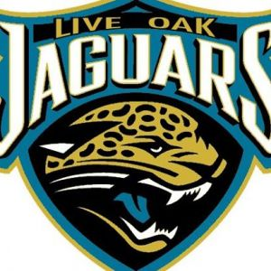 Live Oak Jaguars - Football & Cheer/Live Oak Dolphin Swim Team