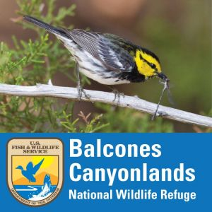 Balcones Canyonlands National Wildlife